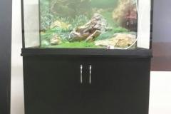 аквариум 200литров