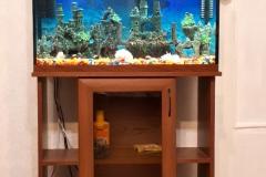 akvarium-na-zakaz-10