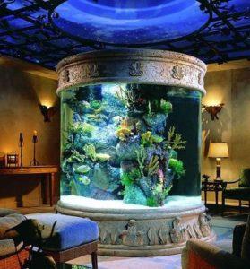 akvarium-bolshoj-kruglyj