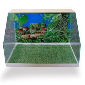 terrarium-malysh-50-litrov-dlya-suh-cher