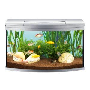 tetra-aquaart-akvarium-100l-evolution2