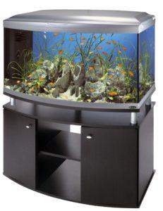 tumby-pod-akvarium-kartinka