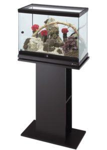 tumby-pod-terrarium-kartinka