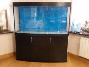 akvarium-na-zakaz-2