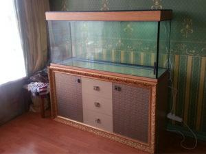 akvarium-na-zakaz-3