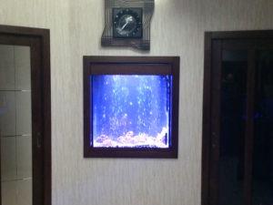 akvarium-na-zakaz-5