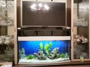 akvarium-na-zakaz-7