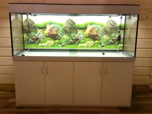 akvarium-na-zakaz-9